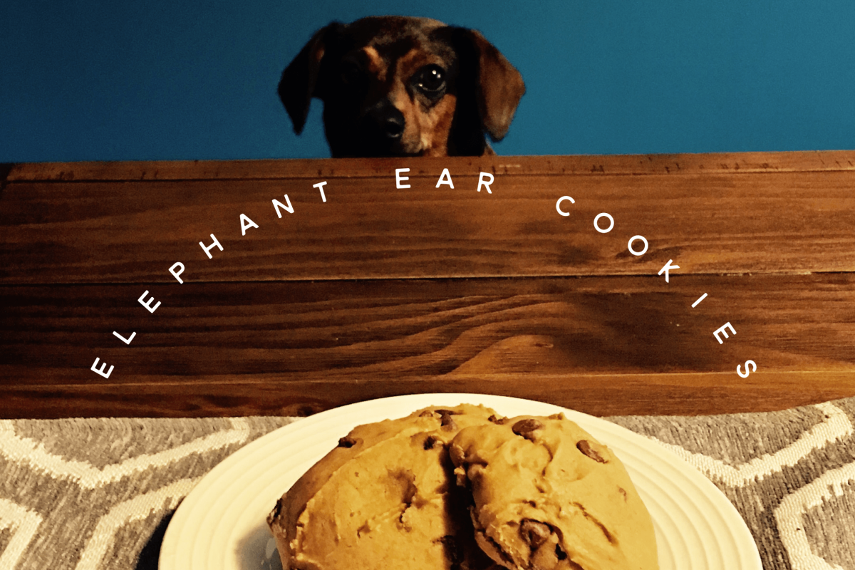 Elephant Ear Cookies