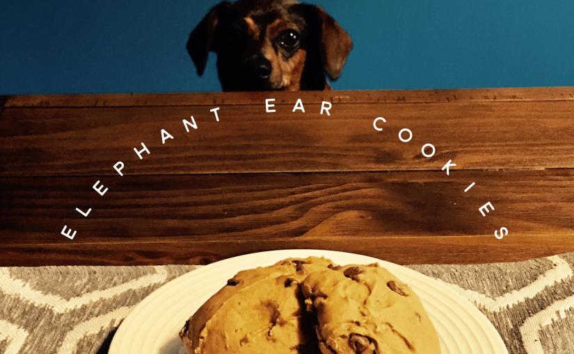 Elephant Ear Cookies